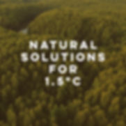kv_natural_solutions_right2.jpg