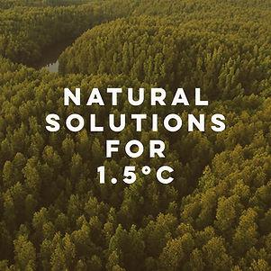 kv_natural_solutions_right2.jpg