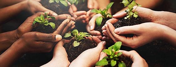 o-cooperativismo-e-o-meio-ambiente.jpg