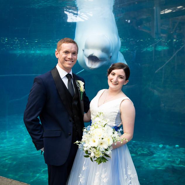 Mystic Aquarium Corbman Wedding (54).jpg
