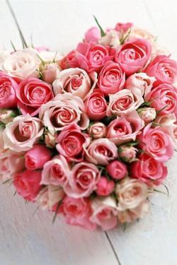 Beautiful Mixed Rose £80