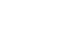 without-code-logo