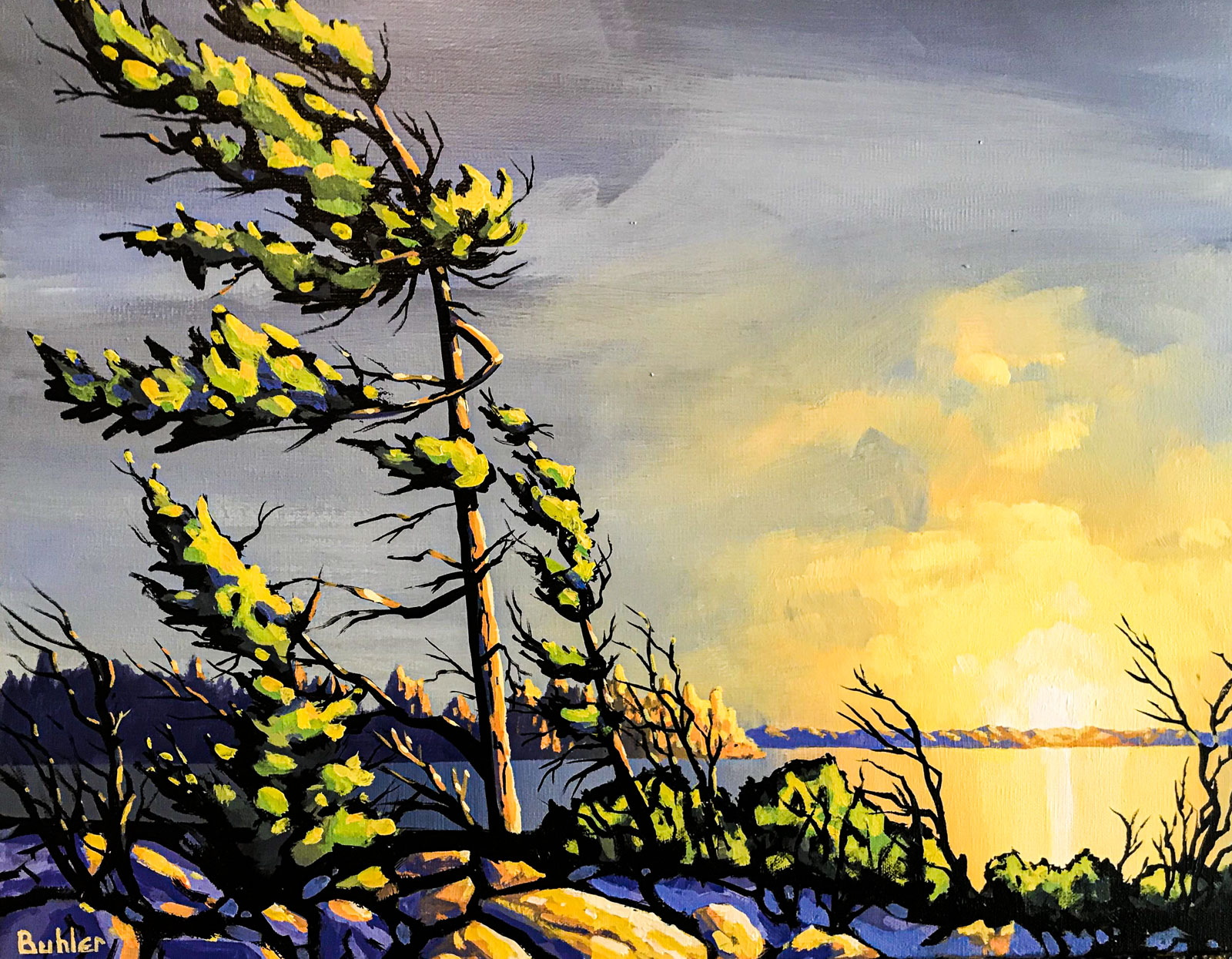 Windswept, Vancouver Island
