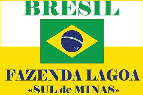 """Fazenda Lagoa """"Sul de Minas"""""""