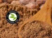 cacao logo.jpg