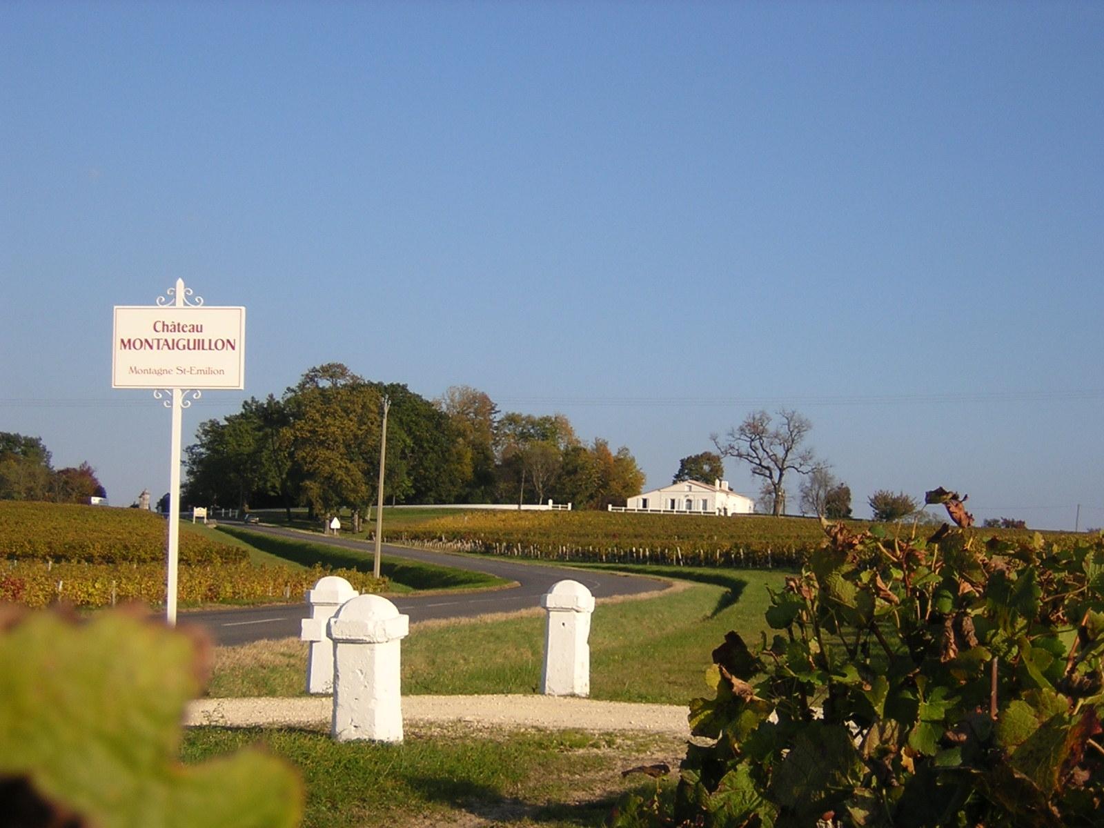 Bienvenu au château Montaiguillon !
