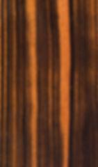 MACASSAR EBONY.jpg