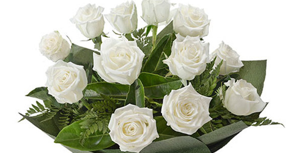 A dozen white roses bouquet