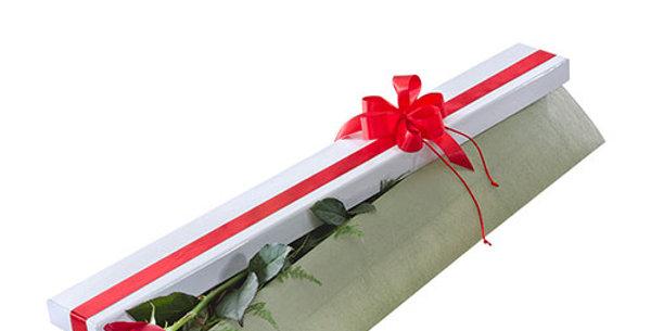 Single Red Rose Box