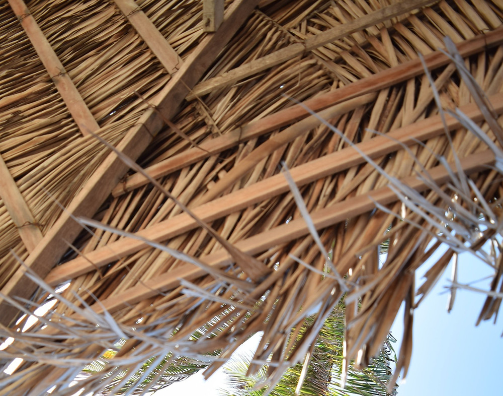 During the Feast of Tabernacles sheds, made of bamboo and other organic materials, are erected.