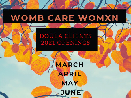 Accepting new doula clients for Spring!