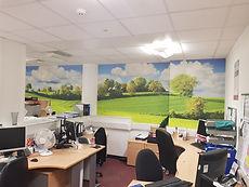 Spray & Up wallpaper print