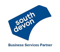 VSD Business Services Partner.JPG