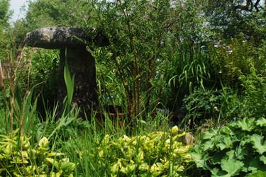 froont garden ladys mantle.jpg