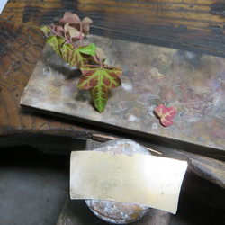 Etape 2. Tracé des feuilles