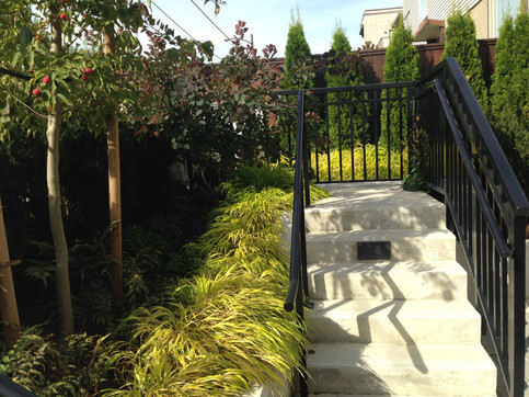 Unit entry planting design at the 4th and Highbury apartments. Client: South Street Development Part of the landscape design as Project Manager for Jonathan Losee Ltd.