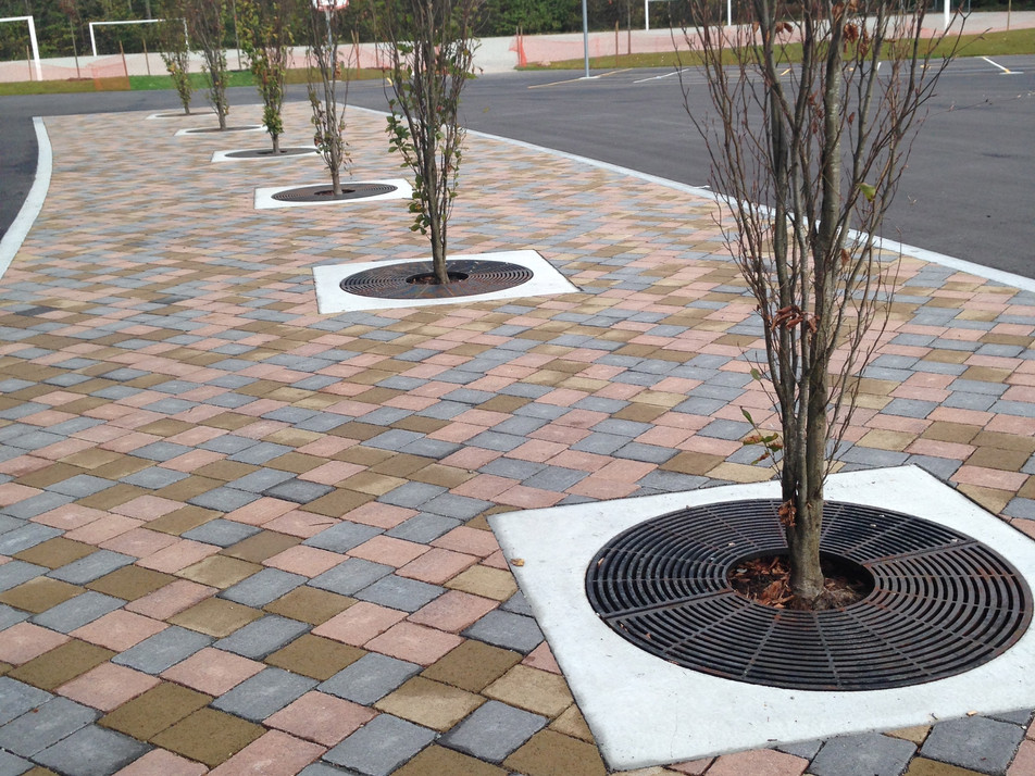 Paving over structural soil design at Norma Rose Point Elementary Client: Vancouver School District. Part of the overall site design as Project Manager for Jonathan Losee Ltd.