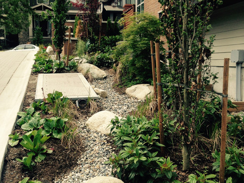 Planting and dry streambed design at the Grandview townhome. Client: Adera Developments. Part of the landscape design as Project Manager for Jonathan Losee Ltd.