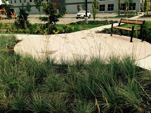 Low maintenance planting & patio design at an industrial site. Client: Hopewell Developments. Part of a site design as Project Manager for Jonathan Losee Ltd.