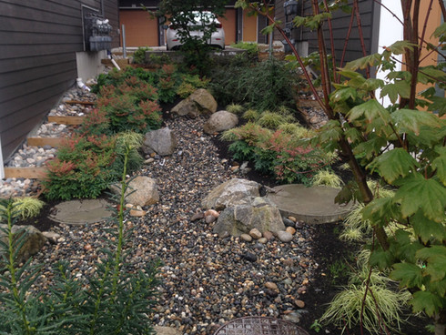 Dry river planting design at the Greenway townhome. Client: Adera Developments. Part of the landscape design as Project Manager for Jonathan Losee Ltd.
