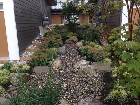 Side yard planting and dry streambed design at the Grandview townhome. Client: Adera Developments Part of the landscape design as Project Manager for Jonathan Losee Ltd.