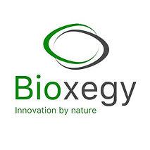 Biozegy logo.jpeg