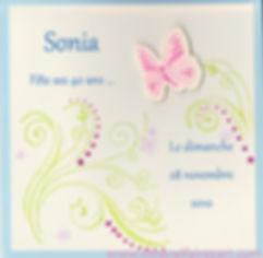 Carte d'invitation anniversaire 40 ans: Papillon papillon rose sur carte ivoire et bleu ciel.