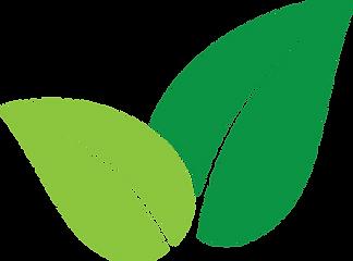 greenleavesvectoricondesignonwhitebackgr