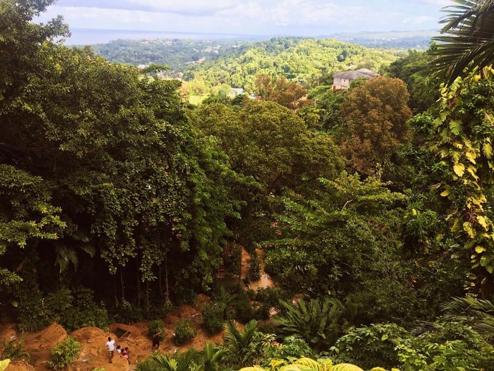 Jamaica travel photo diary