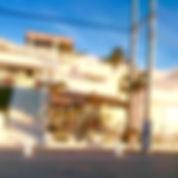 沖縄 島 わんこ 那覇空港 WNS45 わんどらいぶ わんドライブ ワンドライブ 犬 猫 保護