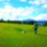 長野オリンピック わんこ 公園 ドッグラン WNS45 わんどらいぶ わんドライブ ワンドライブ 犬 猫 保護