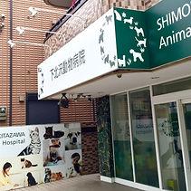 動物病院 下北沢 WNS45 わんどらいぶ わんドライブ ワンドライブ 犬 猫 保護