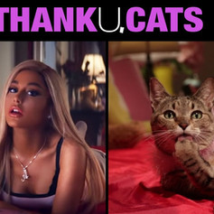 Thank u, Cats