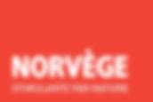 Norvège - Copie.png