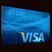 Visa Global.png