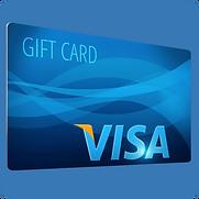 Visa Euro.png