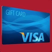 Visa AWS.png