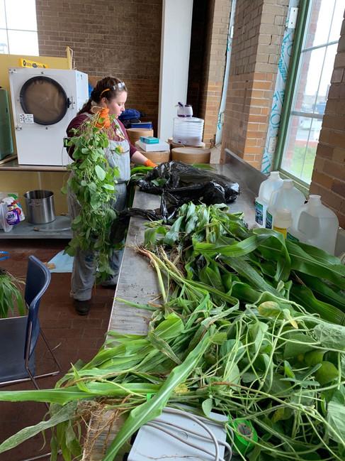 Katie & plants.jpg