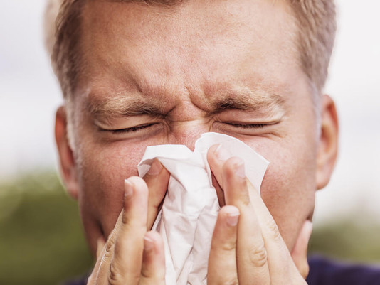 Hay Fever & Eye Allergies - What's The Solution?