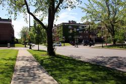 our neighborhood-Ps