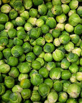 brussels-sprouts-sprouts-cabbage-grocery