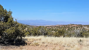 Selling 1 to 5-Acre Lots. Prime New Mexico Real Estate.