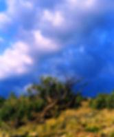 7 BlueSky.1.jpg