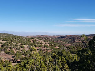Selling Large Lots in a private gated friendly community, New Mexico Real Estate. Sunshine, outdoor recreation - hiking, biking, golf, skiing. Close to Santa Fe and Albuquerque. Pristine Open Space. Gorgeous Views.