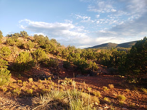 Gorgeous views. Peace, privacy, solitude. NM Real Estate