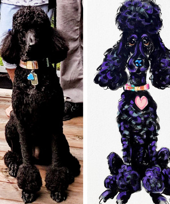 Custom Black Poodle Painting