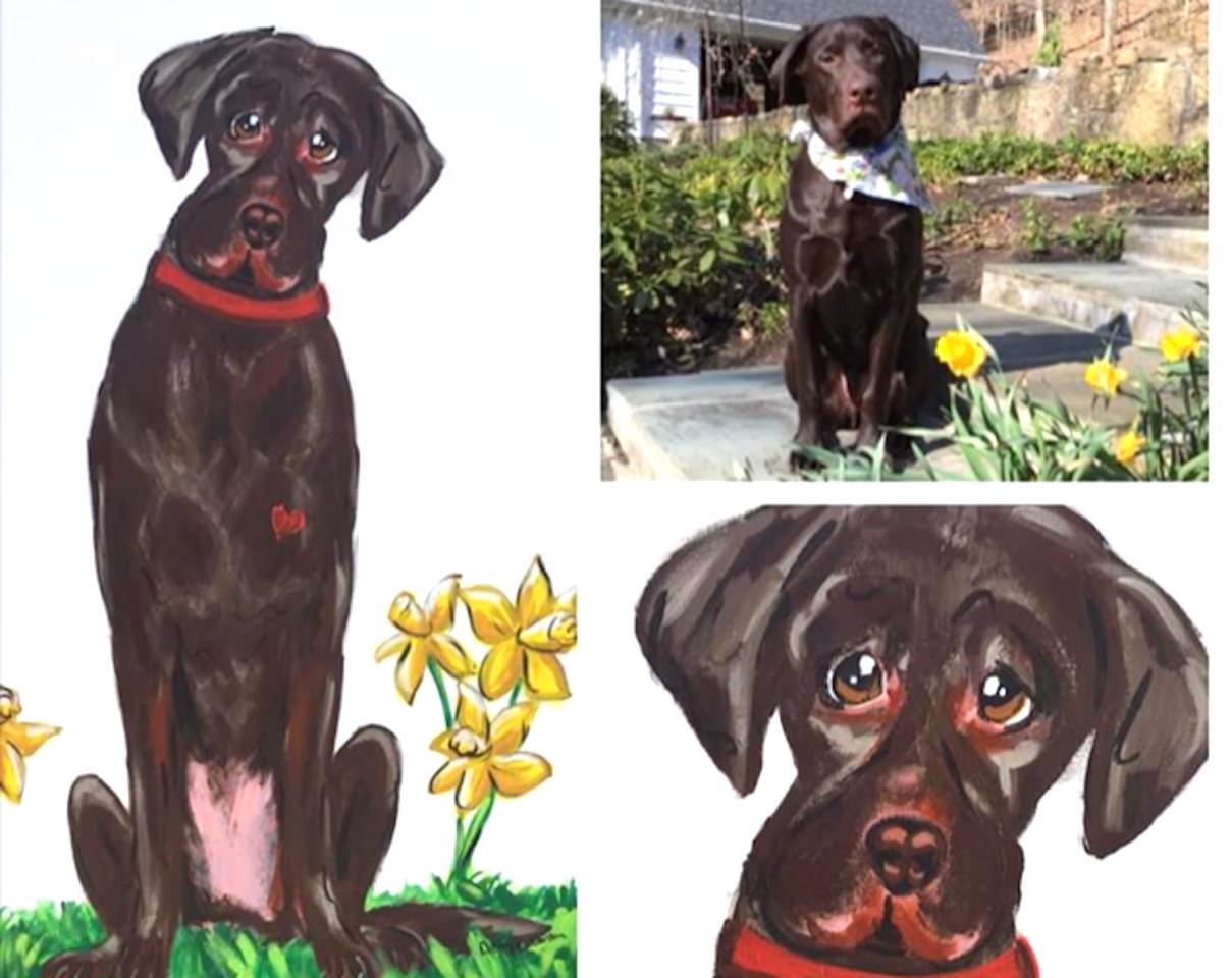 Chocolate Labrador Custom Painting