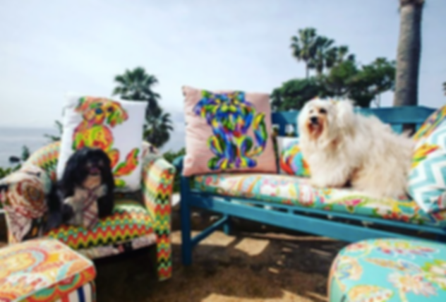 styled pillow ad filler beach.png