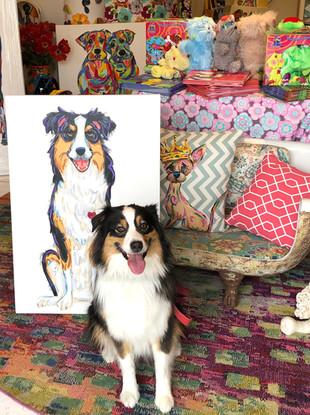 Custom Collie Portait on Canvas