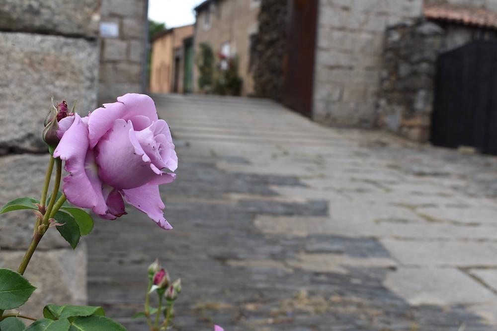 Castillo de San Felices
